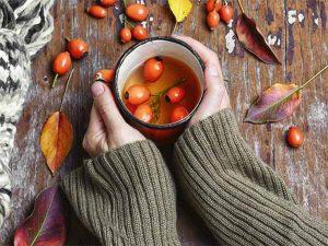 csipkebogyó tea fogyasztása